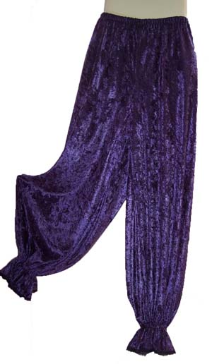 Purple Velvet Gypsy Harem Pants
